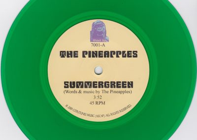 Summergreen-Disc-Scan